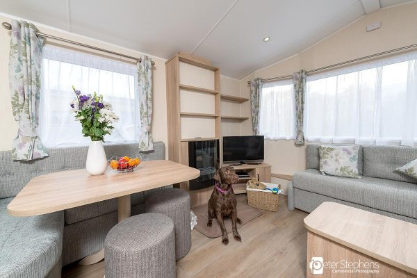 Dart---Cofton-Dog-Friendly---23-24th-Jan-2019---PJSPhotography---DSC_4130